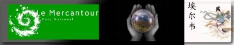catapluter la grenouille! Signature-forum
